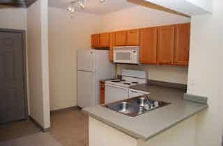 Houston  apartment HOU-61