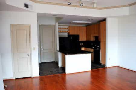Houston  apartment HOU-166