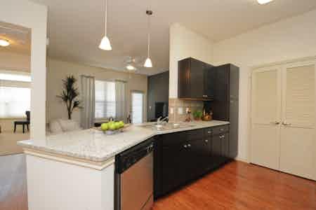 Houston  apartment HOU-290