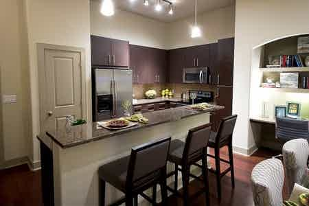 Houston  apartment HOU-364