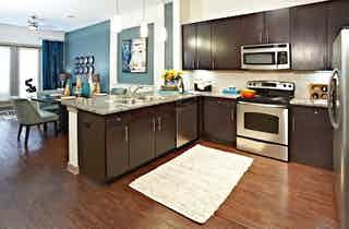 Dallas  apartment DAL-381
