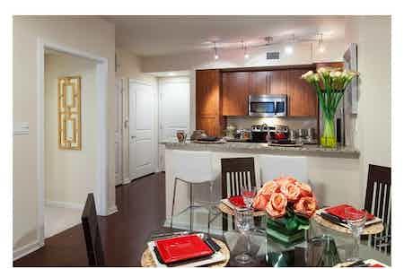 Houston  apartment HOU-399