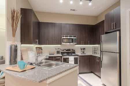 Houston  apartment HOU-404