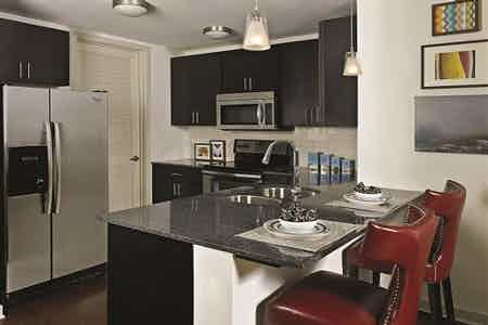 Houston  apartment HOU-406