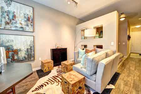 Houston  apartment HOU-434