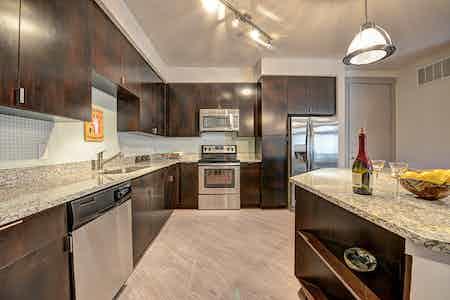 Dallas  apartment DAL-589