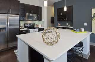 Houston  apartment HOU-600