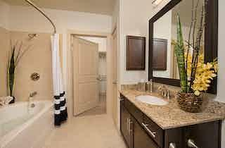 Houston  apartment HOU-539