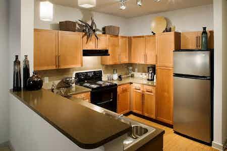 Dallas  apartment DAL-142