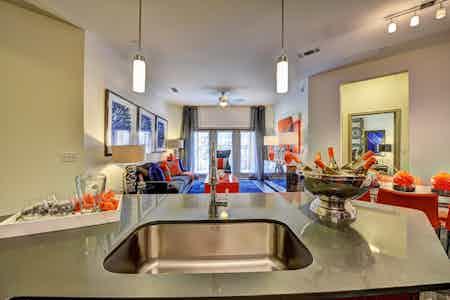 Houston  apartment HOU-551