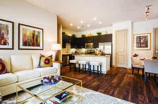 Houston  apartment HOU-552