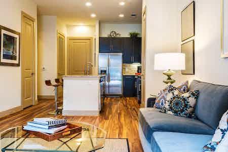 Houston  apartment HOU-552