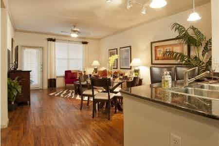 Houston  apartment HOU-395