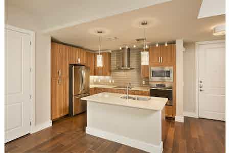 Houston  apartment HOU-558