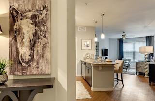 Dallas  apartment DAL-698