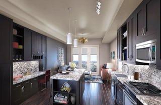 Houston Apartment Hou 721