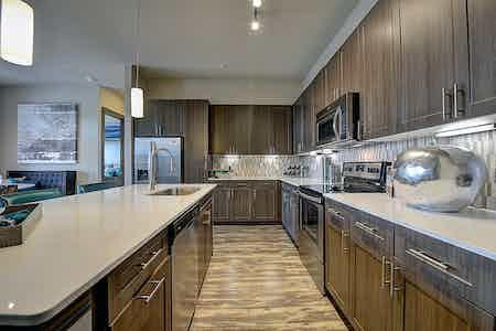 Houston  apartment HOU-667