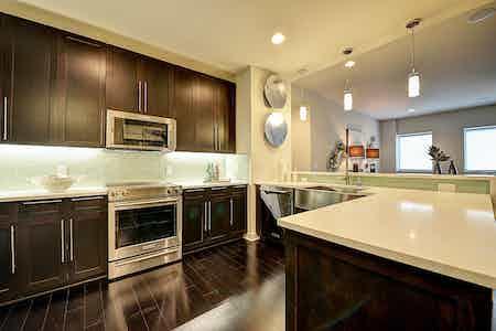 Houston  apartment HOU-736