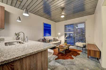 Houston  apartment HOU-725