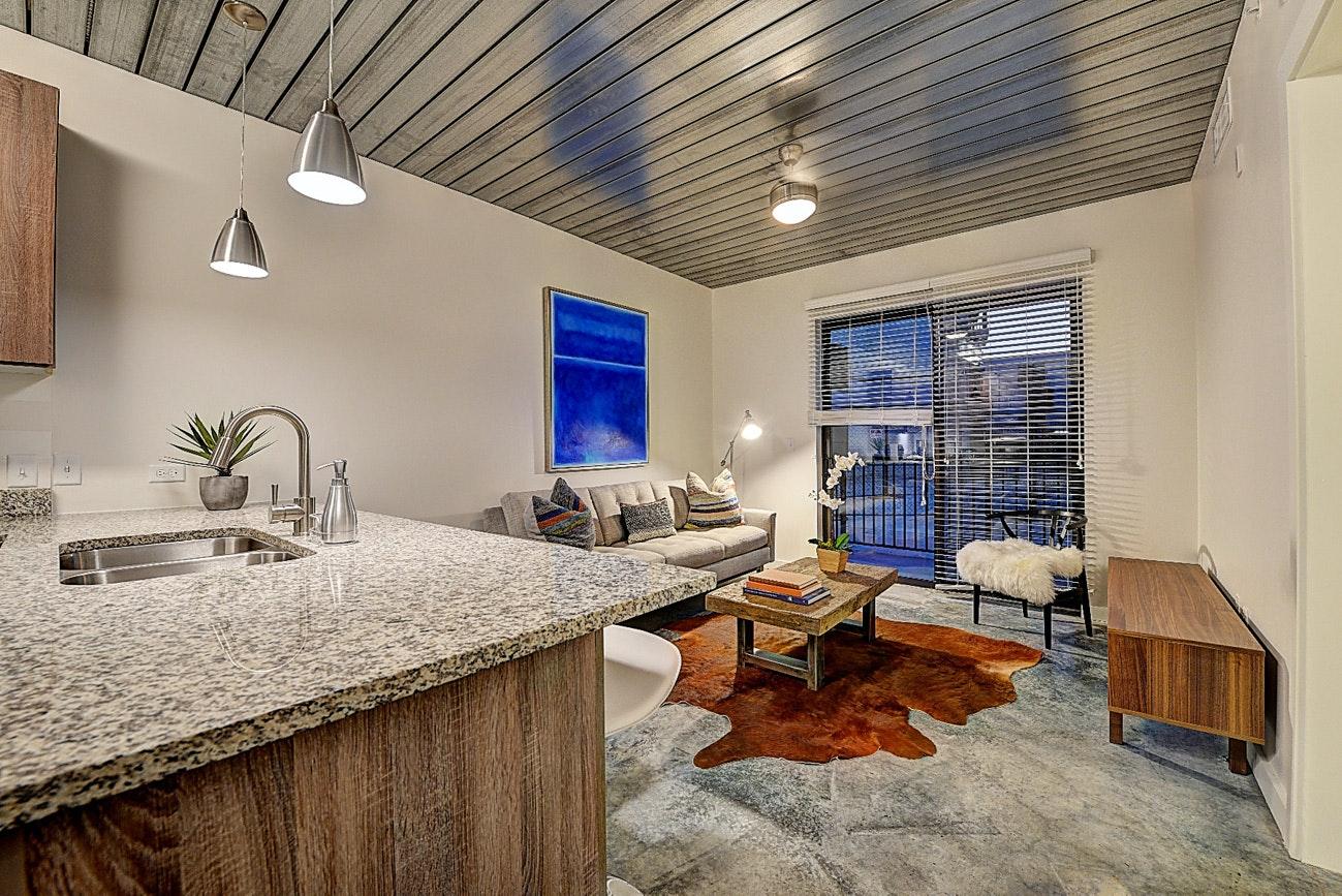 Houston Apartment HOU 725