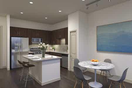 Houston  apartment HOU-758