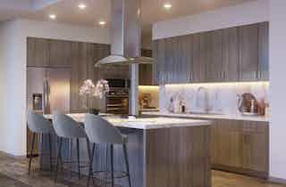 Houston  apartment HOU-1032