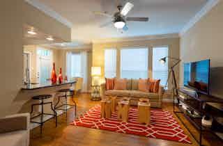 Houston  apartment HOU-1038