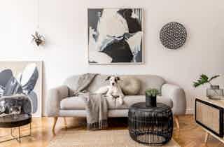 Houston  apartment HOU-1064
