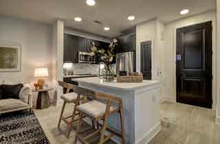 Houston  apartment HOU-1065