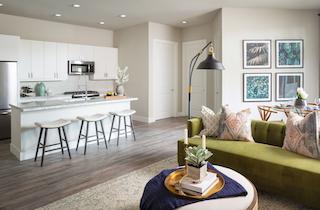 Houston  apartment HOU-1071
