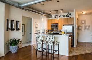 Houston  apartment HOU-293
