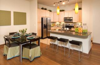 Houston  apartment HOU-330