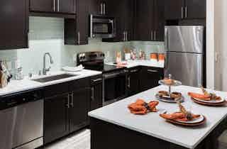 Dallas  apartment DAL-483