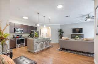 Houston  apartment HOU-611