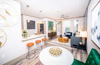 Houston  apartment HOU-755