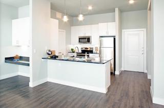 Dallas  apartment DAL-821