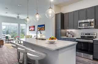 Houston  apartment HOU-917