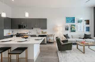 Houston  apartment HOU-933